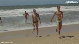 2 couples batifolent sur la plage