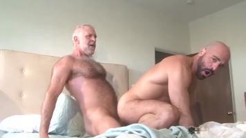 Daddy bear comble le hardeur Adam Russo
