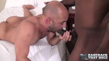 Bear sodomisé en bareback par un black